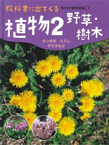 植物2 野草・樹木