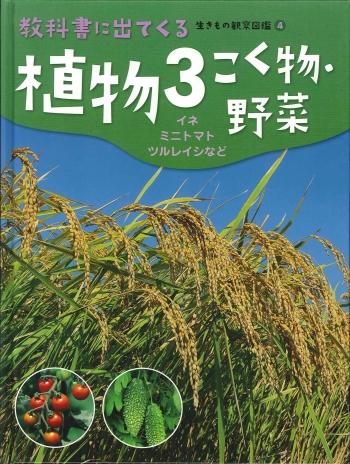 植物3 こく物・野菜
