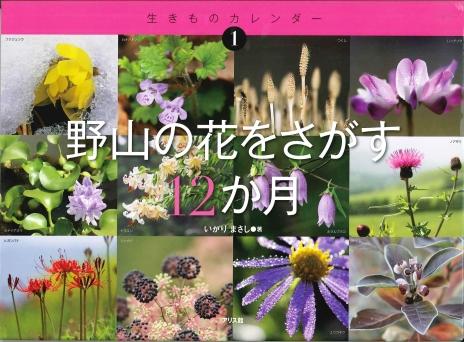 野山の花をさがす12か月