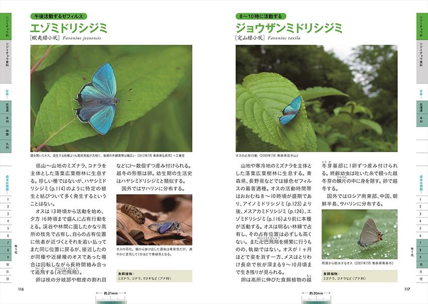 日本の美しい蝶図鑑