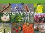 木の葉や花をたのしむ12か月