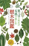 葉っぱで見わけ 五感で楽しむ樹木図鑑